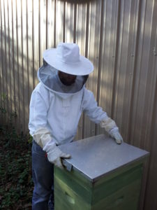 Closing Bee Hive