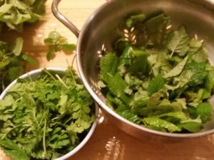 Feverfew and Lemon Balm Leaves